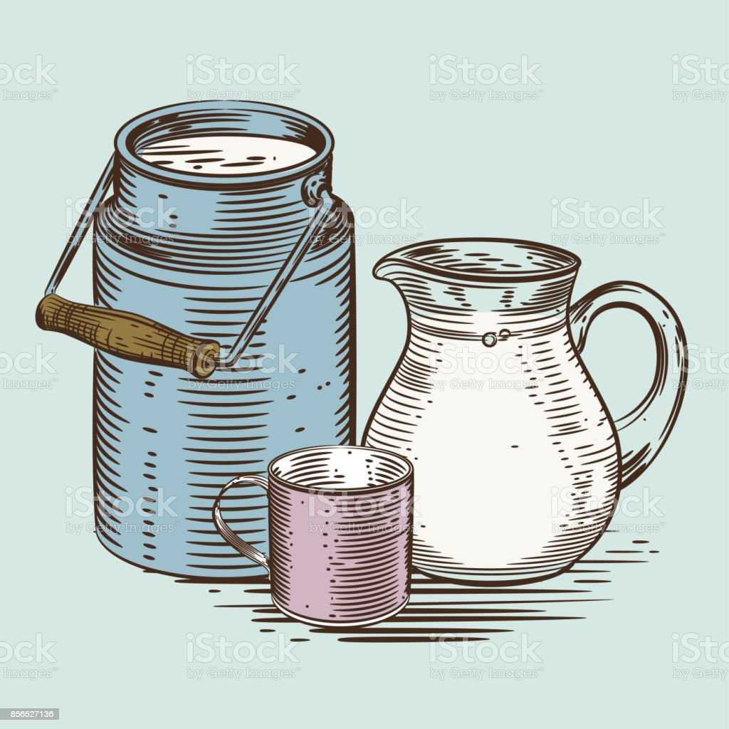 Vector image of a milk canister, a jug for milk and a cup. Depiction in the style of engraving vector art illustration
