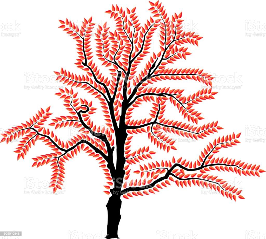 vector image of a tree in autumn vector art illustration