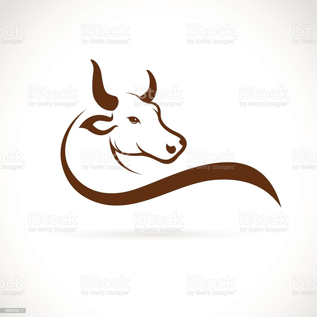 Vector image of an bull head on a white background vector art illustration