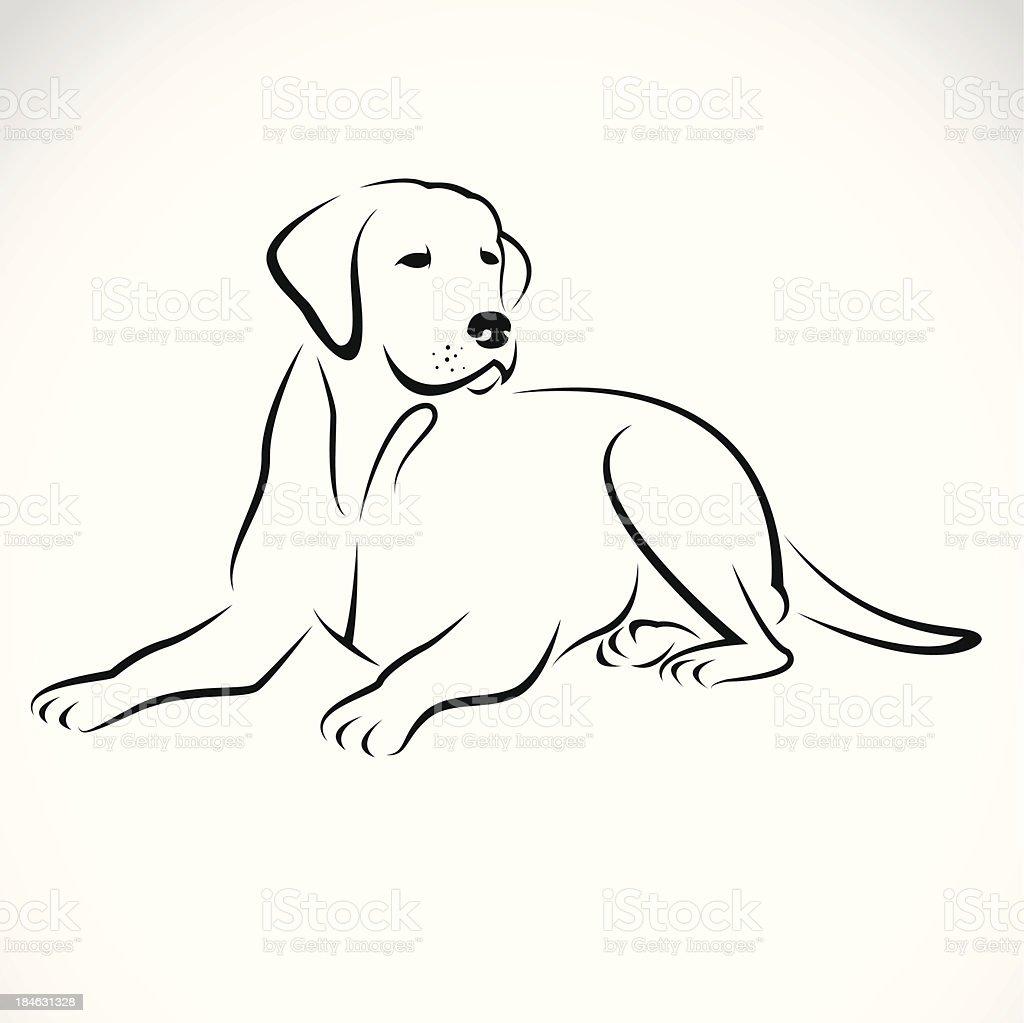Ilustración De Vector De La Imagen De Un Perro Labrador Y