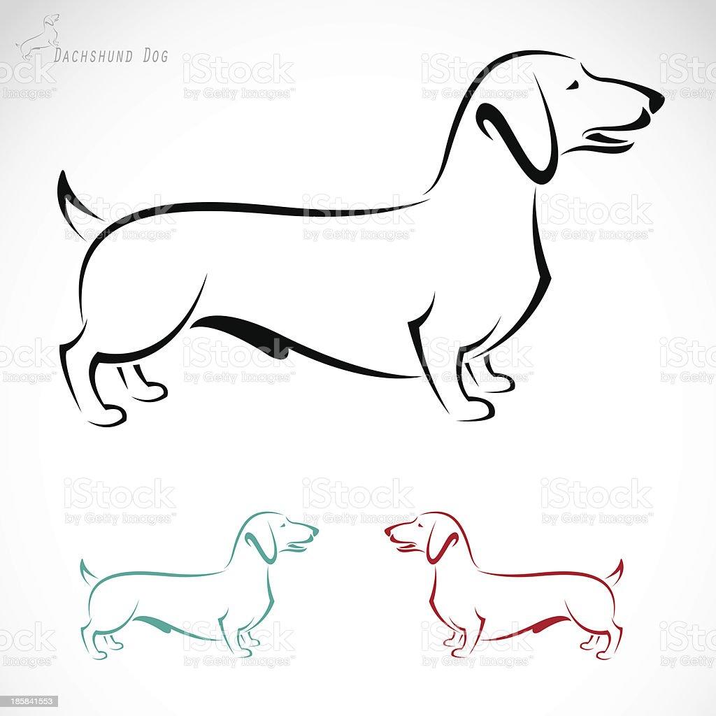 Vector image of an dog (Dachshund) vector art illustration
