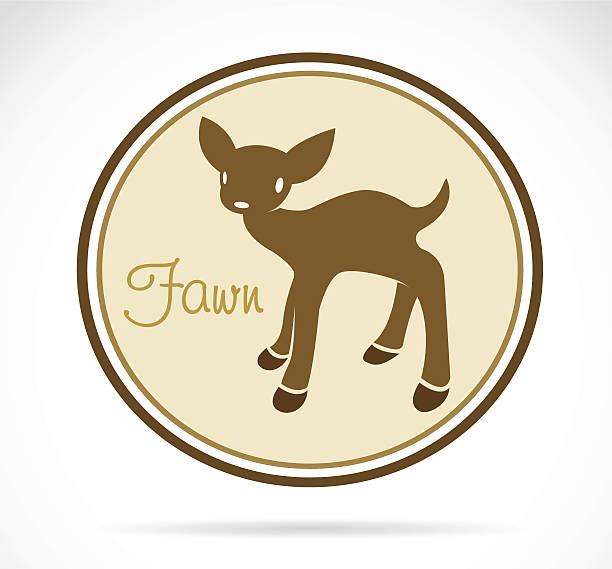 Royalty Free Fawn Clip Art, Vector Images & Illustrations ...