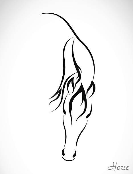 vektor-bild von einem pferd - reiter stock-grafiken, -clipart, -cartoons und -symbole