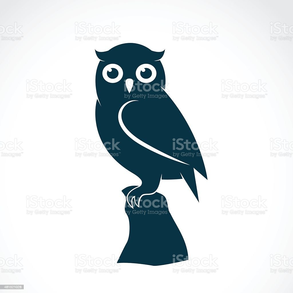 Vector image of an owl on white background vector art illustration