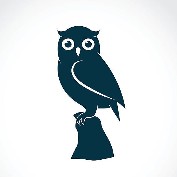 stockillustraties, clipart, cartoons en iconen met vector image of an owl on white background - uil