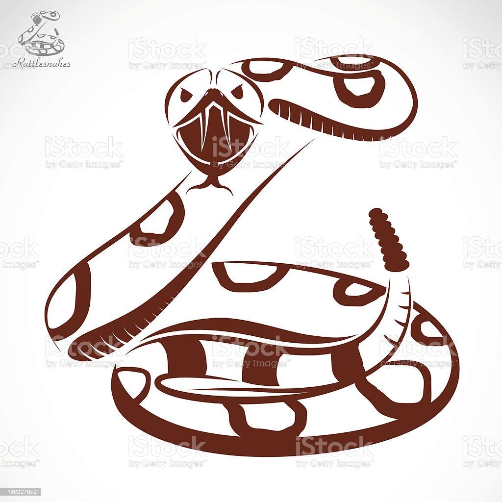 Vector image of an rattlesnake vector art illustration