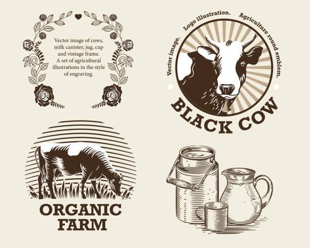 牛、牛乳容器、水差し、カップとビンテージ フレームのベクター画像。彫刻のスタイルで農業のイラストのセット - 乳製品点のイラスト素材/クリップアート素材/マンガ素材/アイコン素材