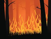 Vector image of forest fire blazing in yellows and oranges