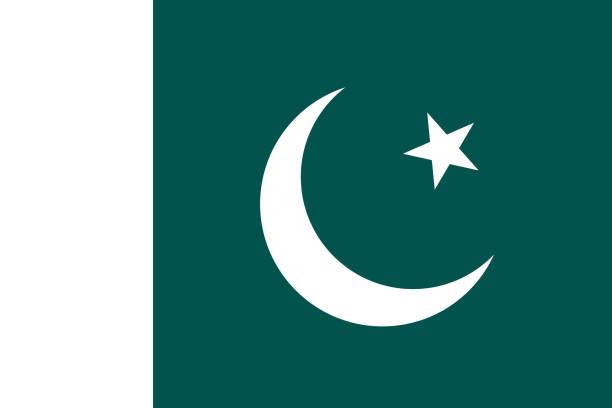 巴基斯坦國旗的向量圖像 - 新月 幅插畫檔、美工圖案、卡通及圖標