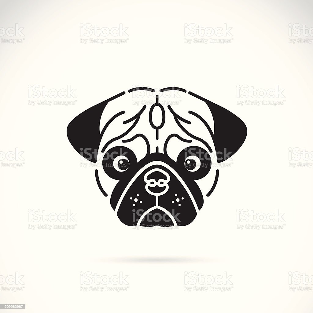 Vector image of pug's face vector art illustration
