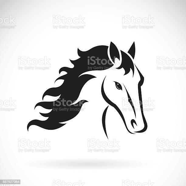 Vector images of horse head design vector id537527054?b=1&k=6&m=537527054&s=612x612&h=qignvt skb8xbd3befzhfynwpirf juy3w dc4m9vxo=