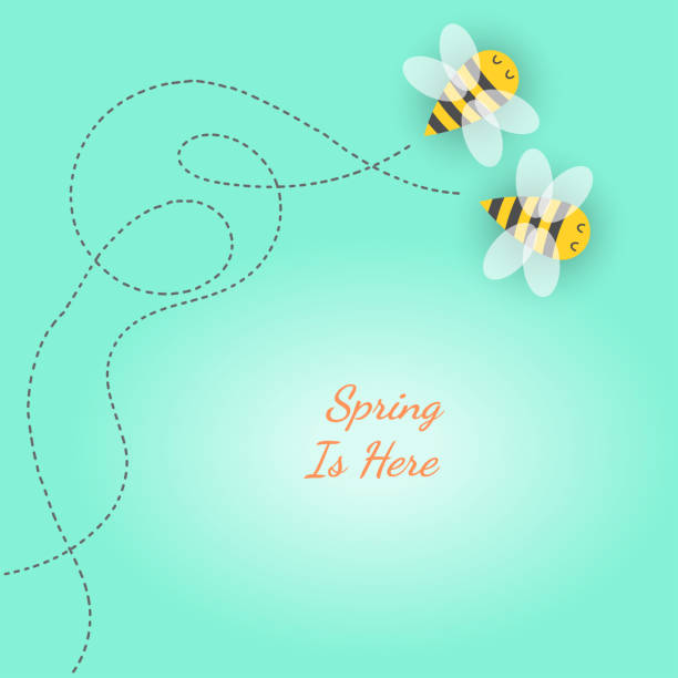 Vector in spring season concept Couple paper cut bees flying on background with words