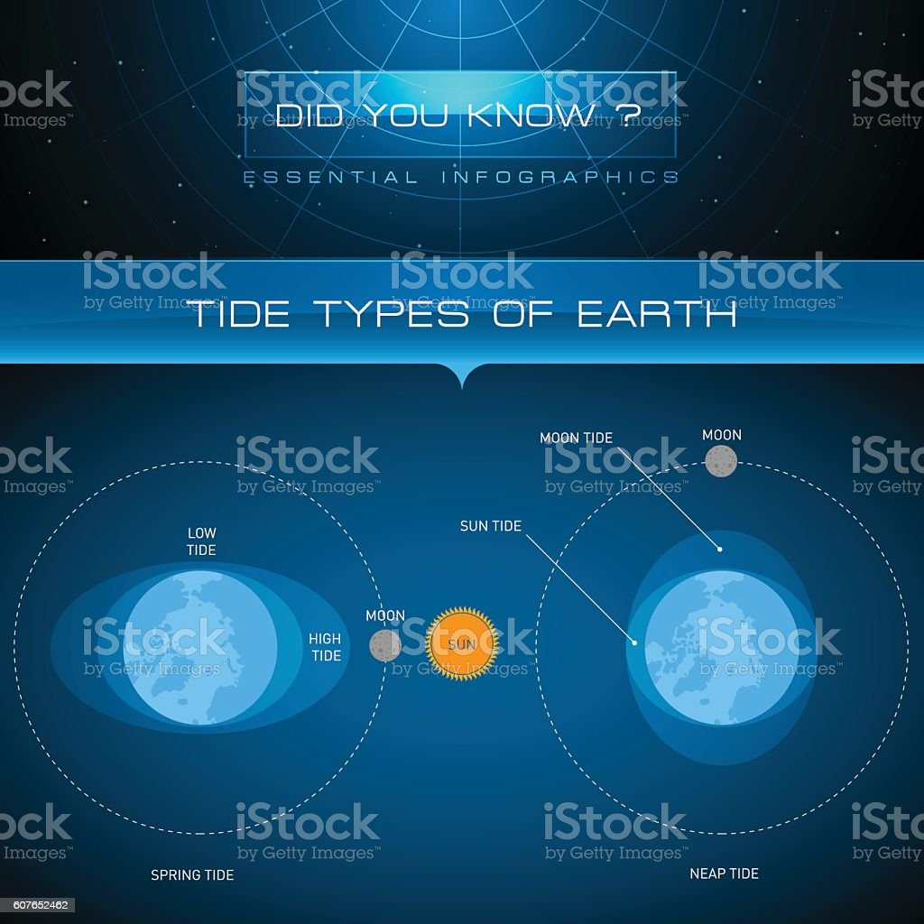 Vector Infographic - Tide Types of Earth vector art illustration