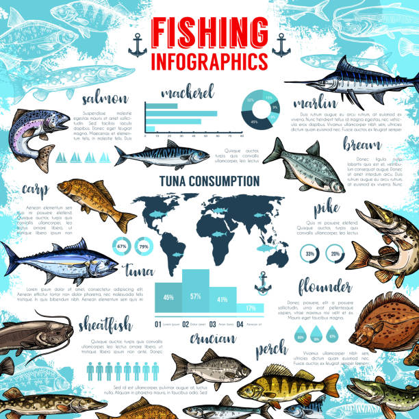 Vector infographics for fishing and fish seafood vector art illustration