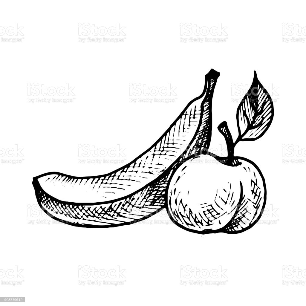 Vector Ink Drawing Banana And Peach Stock Vector Art More Images