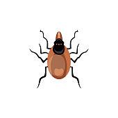 Vector insect allergen