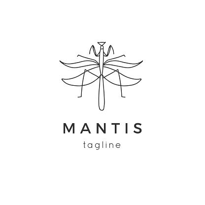 Vector insect label template with a mantis graphics. Minimal hand drawn illustration.