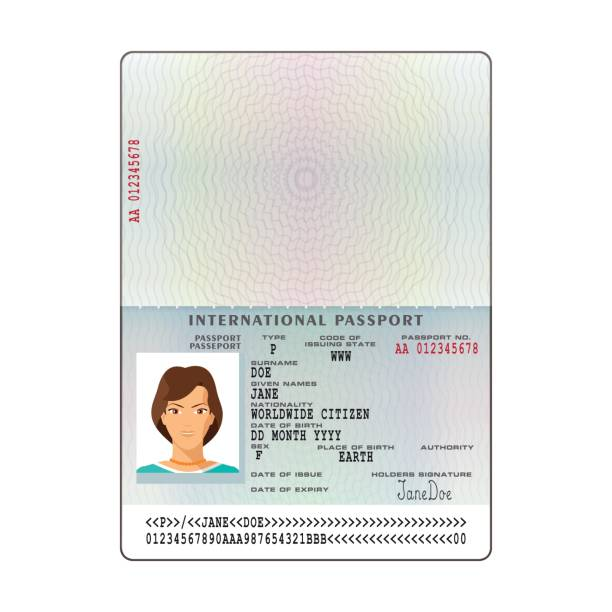 a0d8835b7 Vector international passport template with sample personal data page  vector art illustration