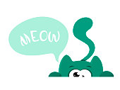 Vector isolate hiding cat with a cry of Meow. Illustration on white background