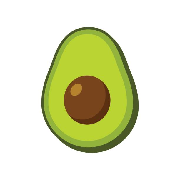 Vector isolated avocado Vector avocado icon isolated on white background. Simple modern flat illustration. avocado stock illustrations