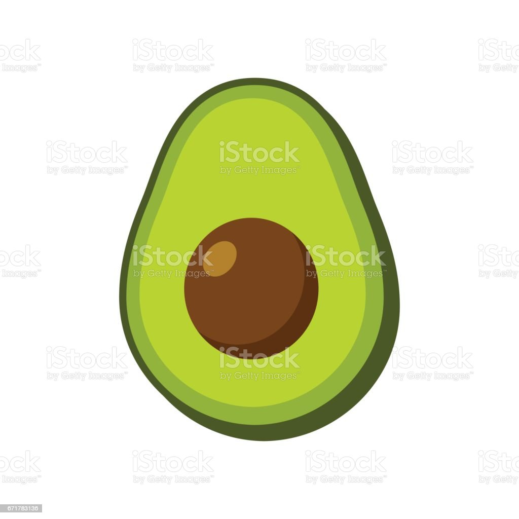 Vector isolated avocado vector art illustration