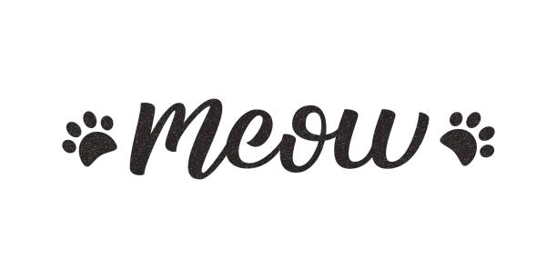 Cat Meow Illustrations Royalty Free Vector Graphics