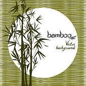 Vector isolated ink bamboo with leaves and branches on a textural background. Illustration in Chinese and Japanese style, traditional graphics.