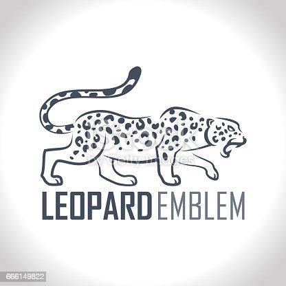 vector isolated leopard or jaguar label  illustration
