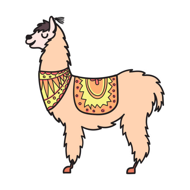 Royalty Free Vicuna Clip Art, Vector Images ...