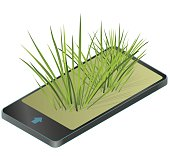 Vector isolated reed in mobile phone. Water plants in communication technologies, paraphrase. Isometric clumps of reeds growing on pool, pond, white background. Rushes flower bamboo reed, green leafs.