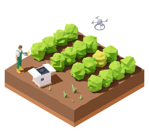 Vector isometric agricultural drone inspecting crop field vector art illustration