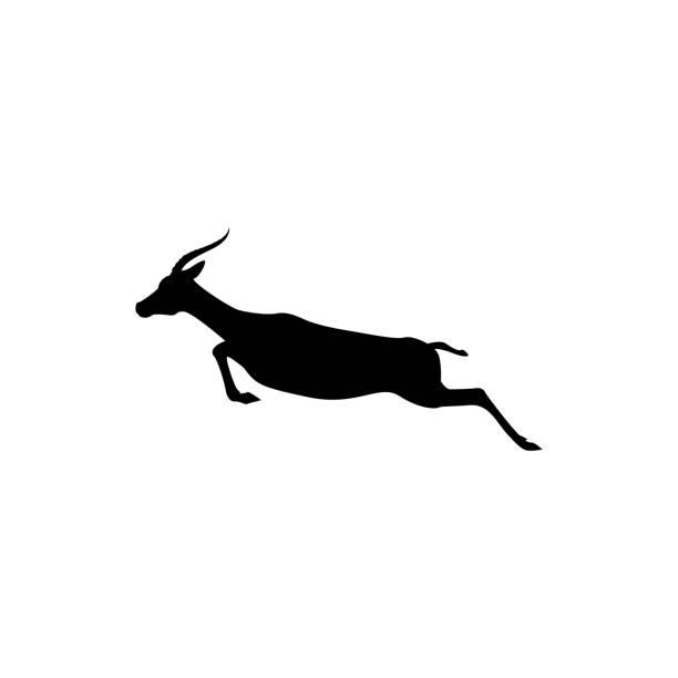 stockillustraties, clipart, cartoons en iconen met vector sprong antelope silhouet naast weergeven voor retro symbolen, emblemen, badges, etiketten sjabloon vintage ontwerpelement. geïsoleerd op witte achtergrond - antilope