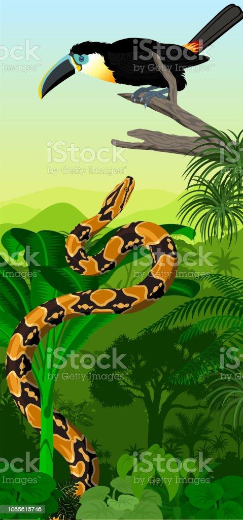 Vector baner vertical de selva tropical com canal-de-bico Tucano e python jiboia - ilustração de arte em vetor