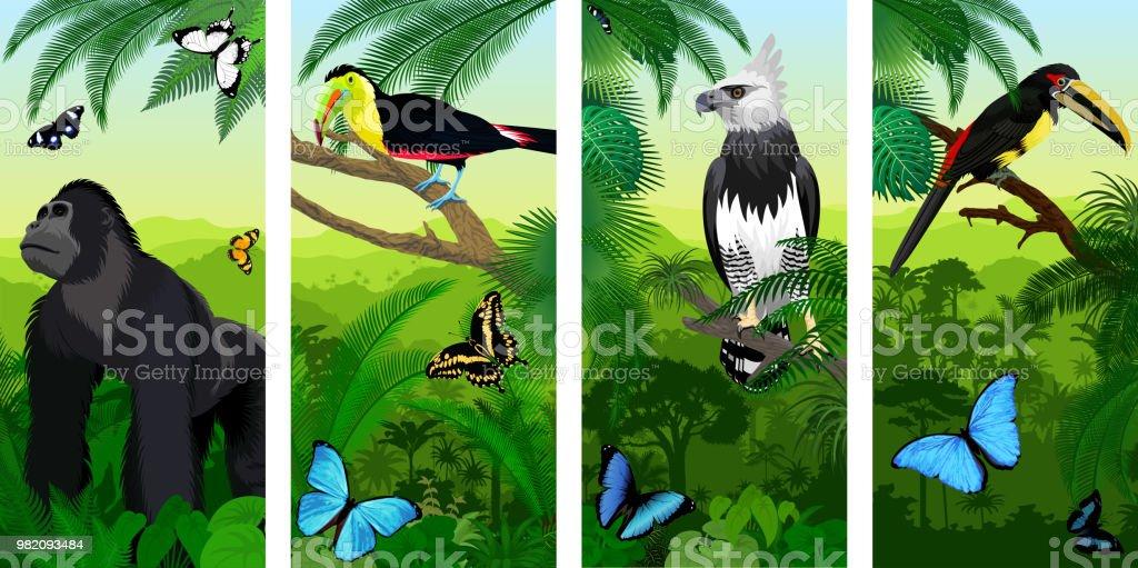 Vector de baner vertical de selva selva gorila macho, pálido-Swainson aracari tucán, águila arpía, tucán pico arco iris y mariposas morfo - ilustración de arte vectorial