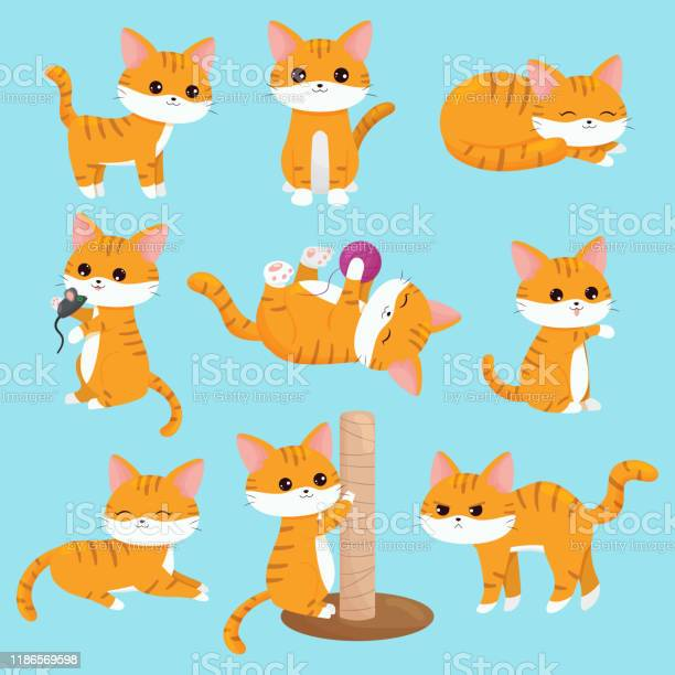 Vector kawaii cats set in different situations vector id1186569598?b=1&k=6&m=1186569598&s=612x612&h=lde0chrsal31ic5upd08ekozhzmwu5k3nublzynnm4c=