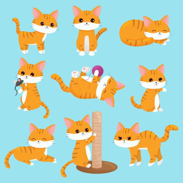 stockillustraties, clipart, cartoons en iconen met vector kawaii katten ingesteld in verschillende situaties. - miauwen