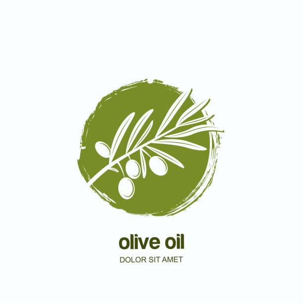 ilustrações de stock, clip art, desenhos animados e ícones de vector label or emblem with green olive branch. concept for agriculture, olive oil and cosmetics package. - mediterranean food