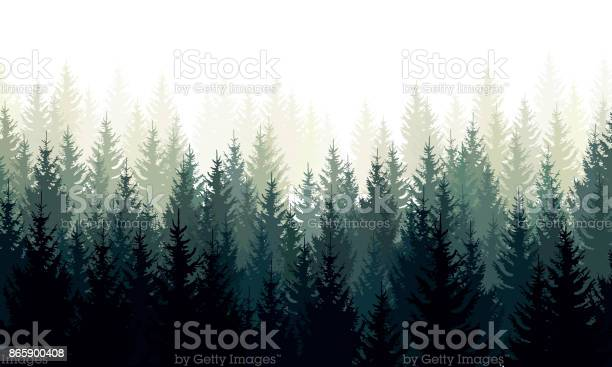 Vector landscape with green silhouettes of coniferous trees in the vector id865900408?b=1&k=6&m=865900408&s=612x612&h=salcna1ducyzpdfxj1cemyubuhiuh4l8od8hjlpgxku=