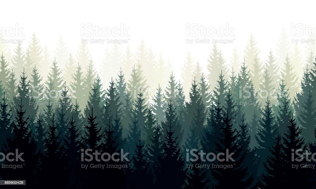 Paisaje de vectores con siluetas verdes de árboles coníferos en la niebla - ilustración de arte vectorial