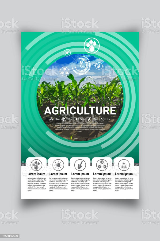 vector layout templates brochure flyer design digital agriculture concept size a4 royalty free vector - Agriculture Brochure Templates Free