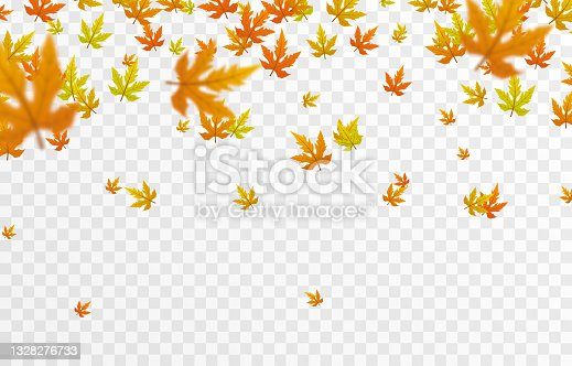 istock Vector leaf fall on an isolated transparent background. Autumn, the leaves are falling from the trees. Leaves png. 1328276733