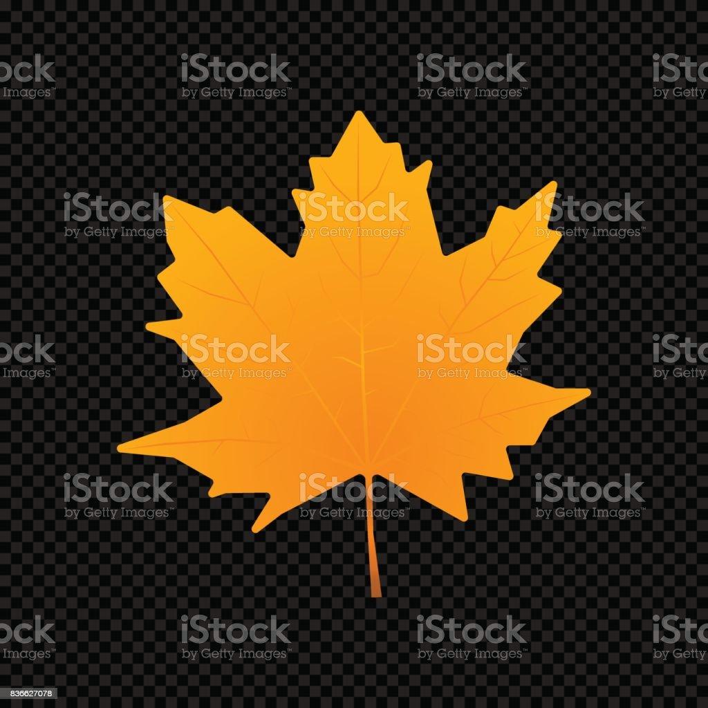 Vector leaf isolated on dark transparent background