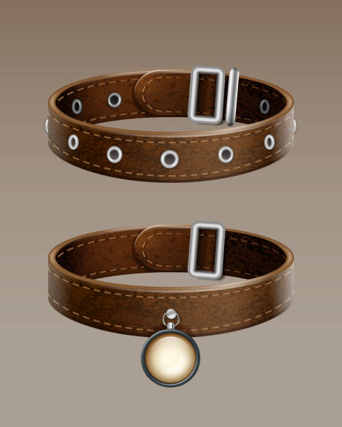 Vector leather collar Realistic vector brown leather dog collar for pets isolated on gradient background collar stock illustrations