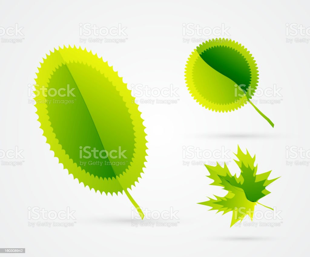 Vector leaves royalty-free vector leaves stock vector art & more images of abstract