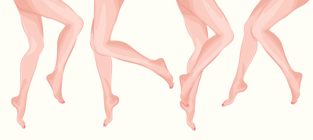 Vector legs vector art illustration