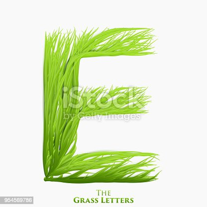 Vector Letter E Of Juicy Grass Alphabet Green E Symbol Consisting Of