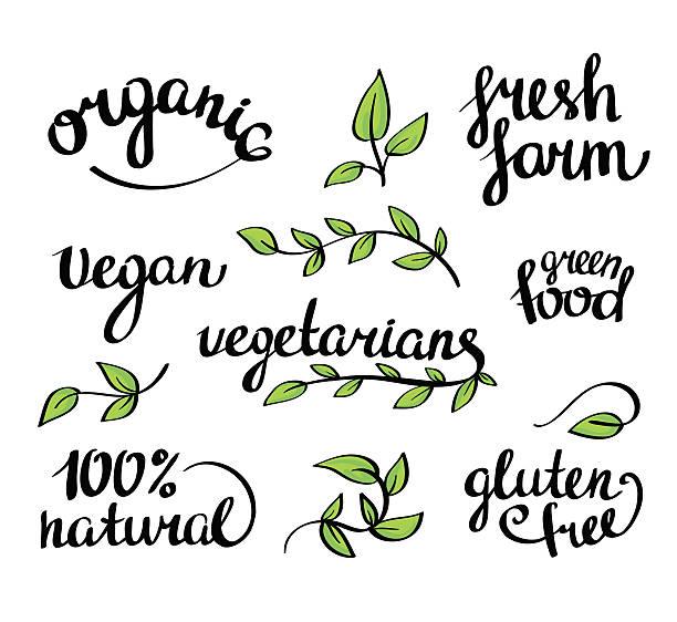 vektor buchstaben-organische natürliche lebensmittel und vegetarier, veganer menü - gluten stock-grafiken, -clipart, -cartoons und -symbole