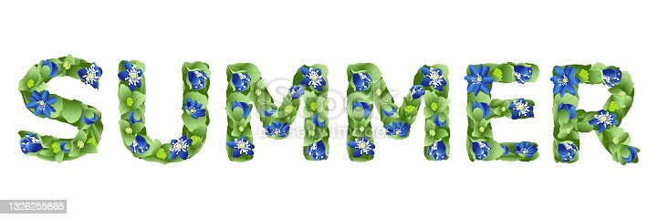 istock vector lettering Summer, made in the form of flowers and leaves of liverwort 1326255865
