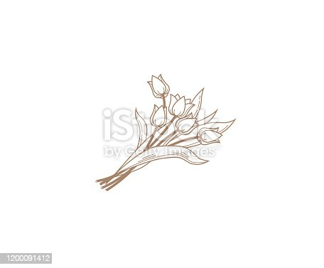 Vector line art bouquet of blooming spring flowers. Tulip flower line art. Spring symbol for Women's Day, Mothers Day. Isolated tulips on white background. Design linear artwork element, icon.
