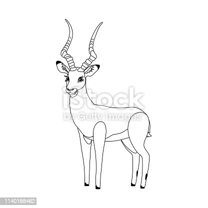 vector line cartoon animal clip art cute impala
